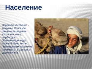 Население Коренное население - бедуины. Основное занятие разведение скота: ко