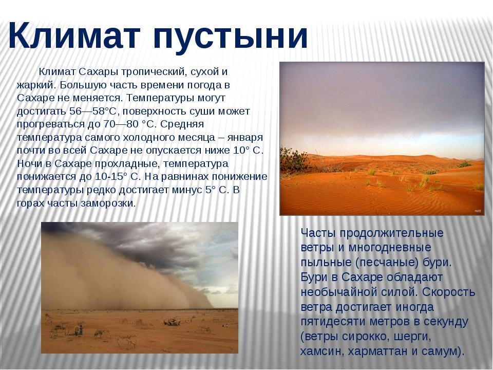 Климат Сахары тропический, сухой и жаркий. Большую часть времени погода в Са...