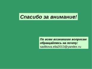 Спасибо за внимание! По всем возникшим вопросам обращайтесь на почту: sadikov