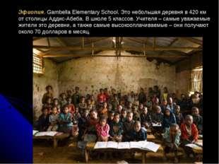 Эфиопия. Gambella Elementary School. Это небольшая деревня в 420 км от столиц