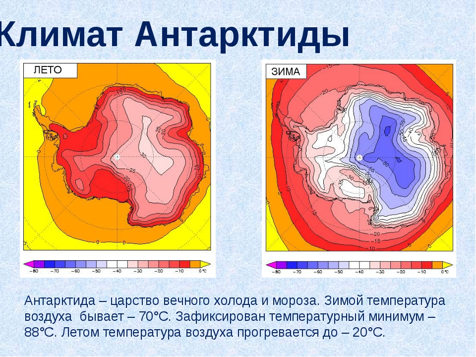 Климат Антарктиды Антарктида – царство вечного холода и мороза. Зимой темпера...