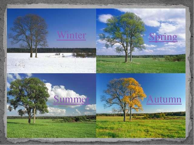 Spring Summer Autumn Winter