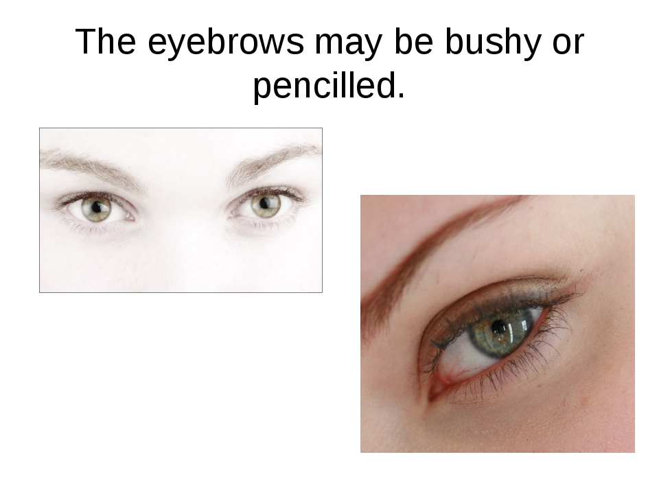 The eyebrows may be bushy or pencilled.