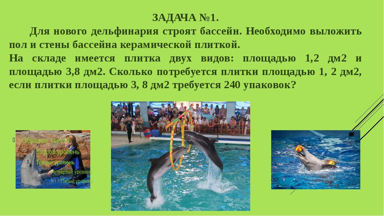 ЗАДАЧА №1. Для нового дельфинария строят бассейн. Необходимо выложить пол и с...