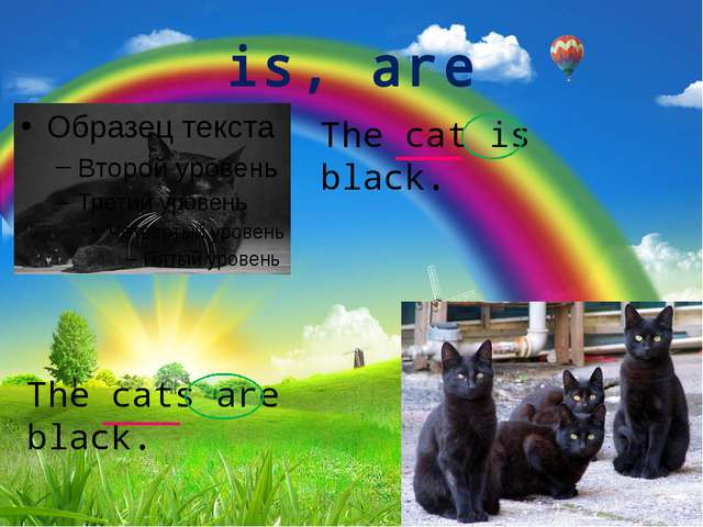 is, are The cat is black. The cats are black.