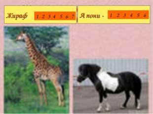 Жираф А пони - 1234567 123456