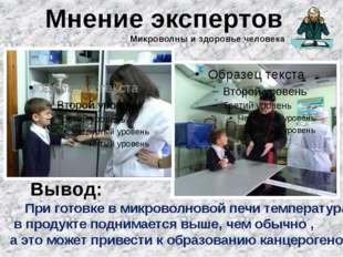 Мнение экспертов Вывод: При готовке в микроволновой печи температура в продук