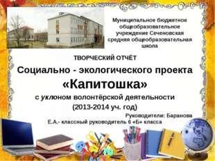 Муниципальное бюджетное общеобразовательное учреждение Сеченовская средняя об