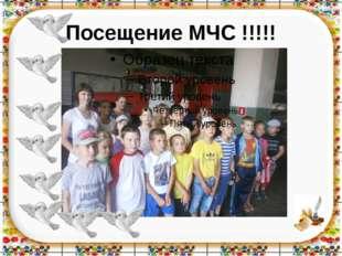 Посещение МЧС !!!!!