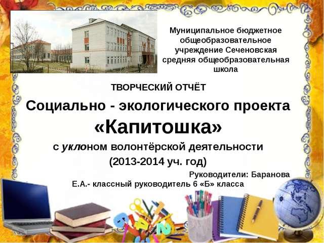Муниципальное бюджетное общеобразовательное учреждение Сеченовская средняя об...