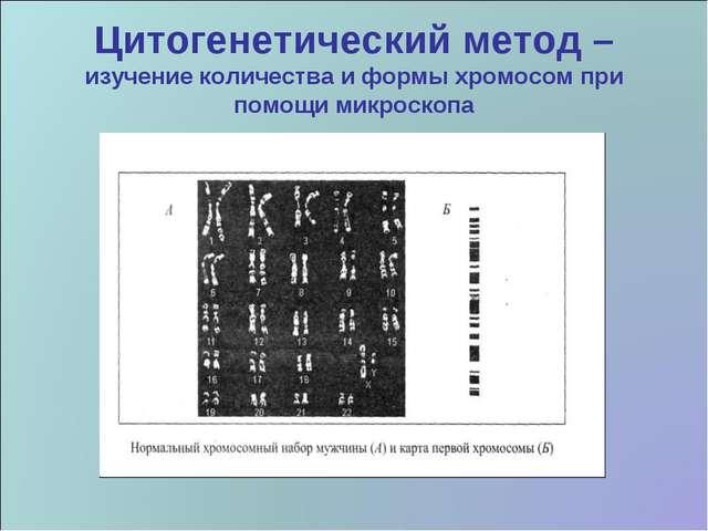 Цитогенетический метод – изучение количества и формы хромосом при помощи микр...
