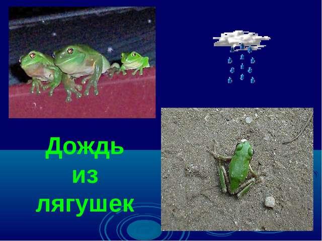 Дождь из лягушек