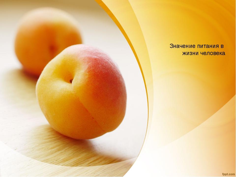 Значение питания в жизни человека