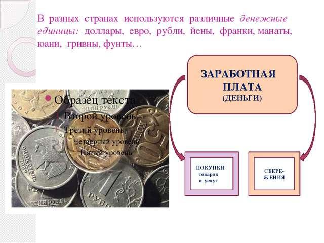 В разных странах используются различные денежные единицы: доллары, евро, рубл...