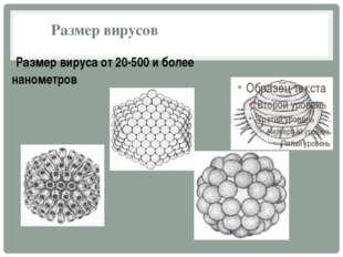 Размер вирусов Размер вируса от 20-500 и более нанометров