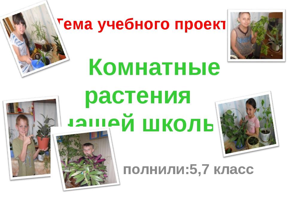 Тема учебного проекта: Комнатные растения нашей школы Выполнили:5,7 класс