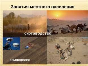 Занятия местного населения скотоводство земледелие