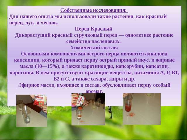 Собственные исследования: Для нашего опыта мы использовали такие растения, к...