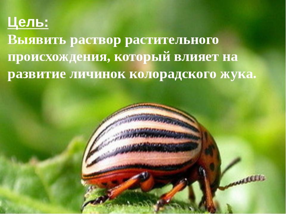 Цель: Выявить раствор растительного происхождения, который влияет на развити...