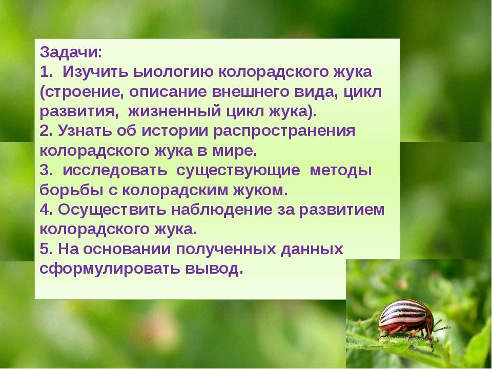 Задачи: 1. Изучить ьиологию колорадского жука (строение, описание внешнего...