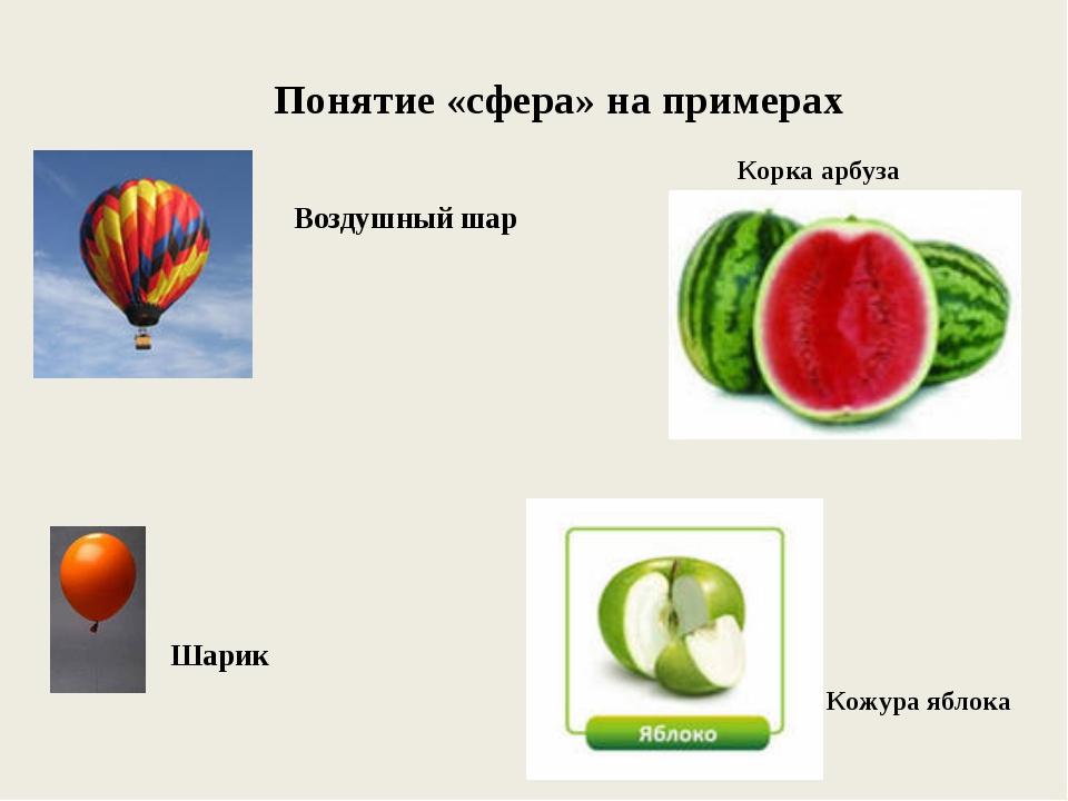 Понятие «сфера» на примерах