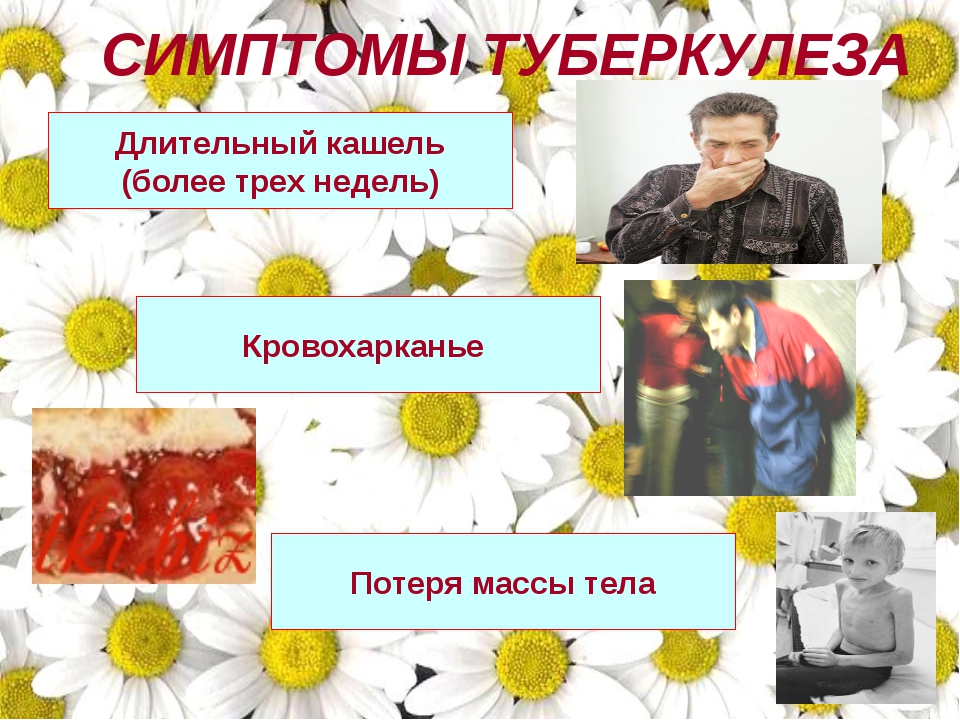 СИМПТОМЫ ТУБЕРКУЛЕЗА Длительный кашель (более трех недель) Кровохарканье Пот...