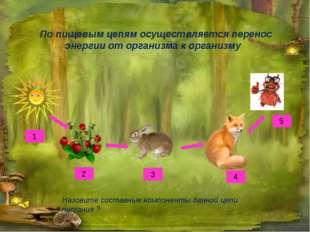 По пищевым цепям осуществляется перенос энергии от организма к организму Назо