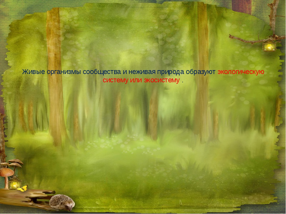 Живые организмы сообщества и неживая природа образуют экологическую систему и...