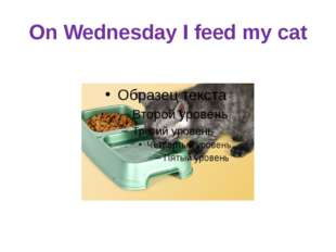 On Wednesday I feed my cat