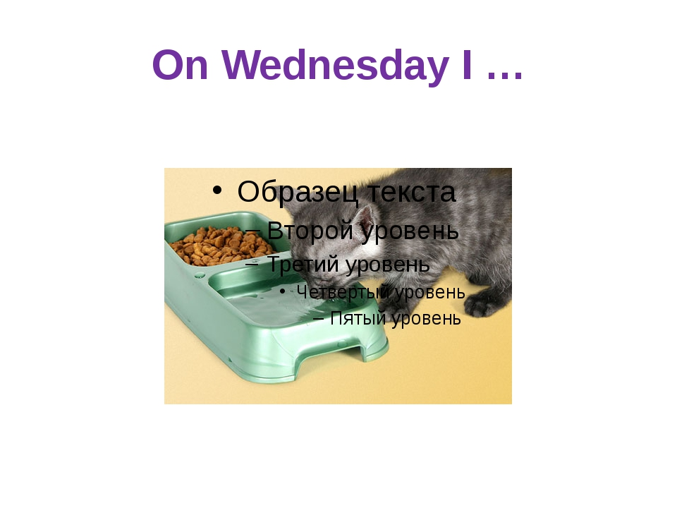 On Wednesday I …
