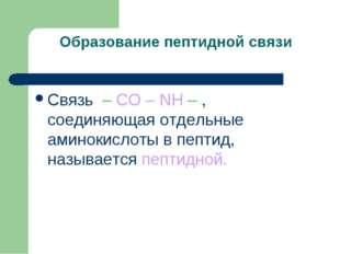 Образование пептидной связи Связь – CO – NH – , соединяющая отдельные аминоки