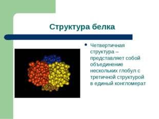 Структура белка Четвертичная структура – представляет собой объединение неско