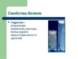 Свойства белков Гидролиз – разрушение первичной структуры белка водой в прису