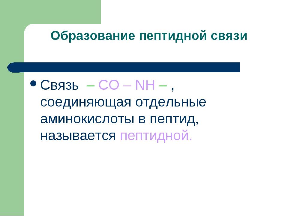 Образование пептидной связи Связь – CO – NH – , соединяющая отдельные аминоки...