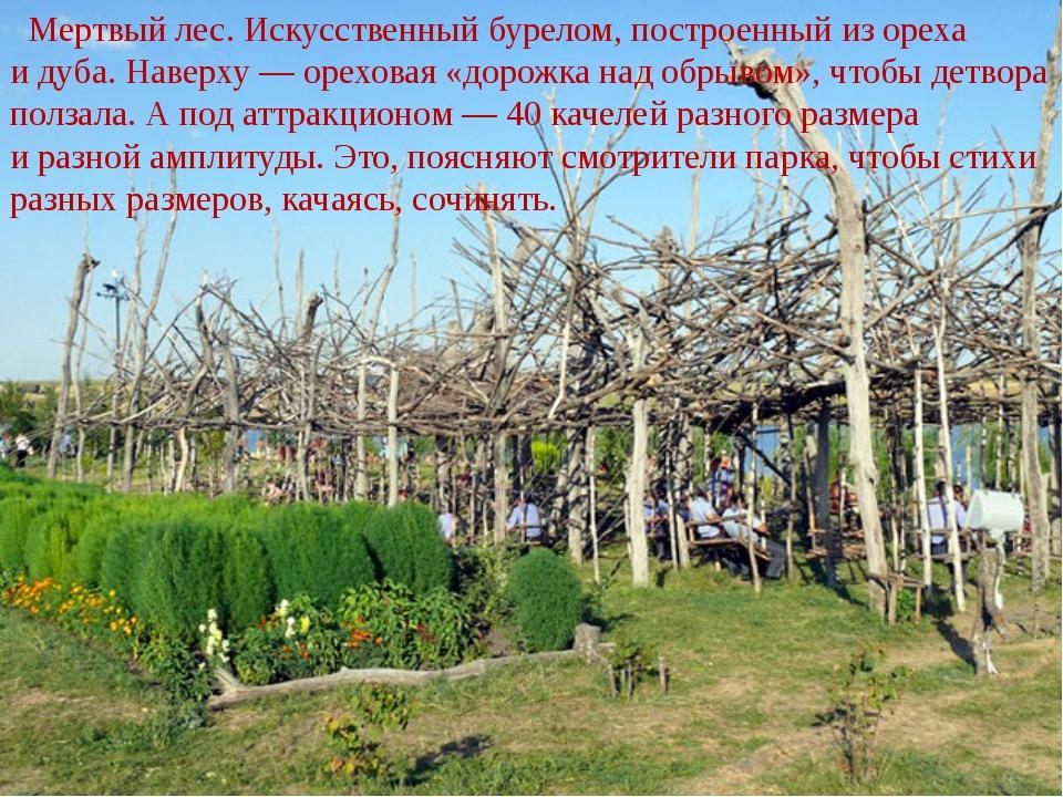 Мертвый лес. Искусственный бурелом, построенный изореха идуба. Наверху— о...