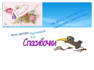 Фото автора Пыхтеевой Л.А На фото сын автора: Пыхтеев Святослав
