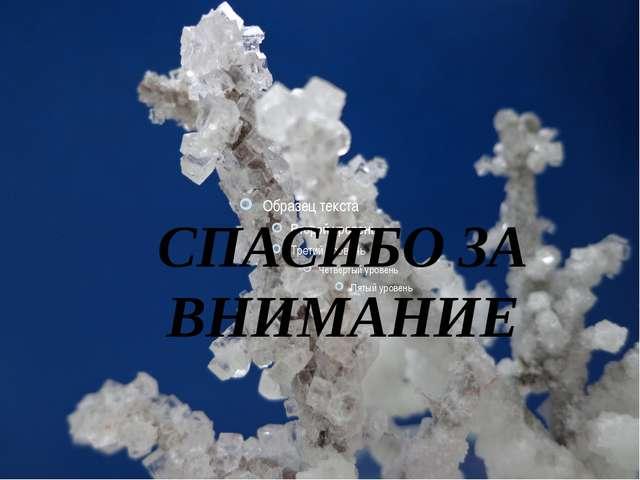 Выращивание кристаллов в домашних условиях СПАСИБО ЗА ВНИМАНИЕ