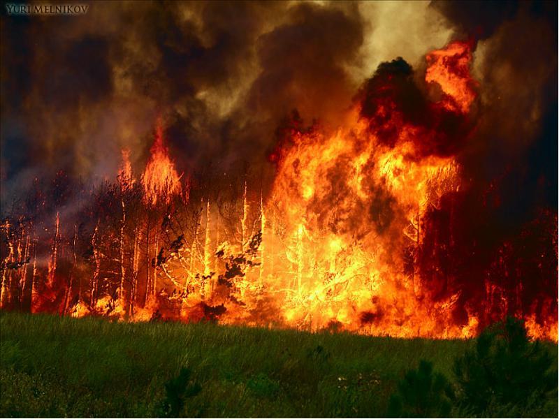 Фотография Лесные пожары.. из раздела репортаж 2401807 - фото.сайт - Photosight.ru