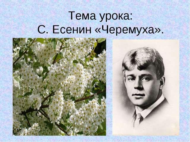Тема урока: С. Есенин «Черемуха».