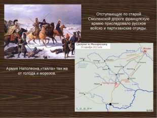 Отступающую по старой Смоленской дороге французскую армию приследовало русско