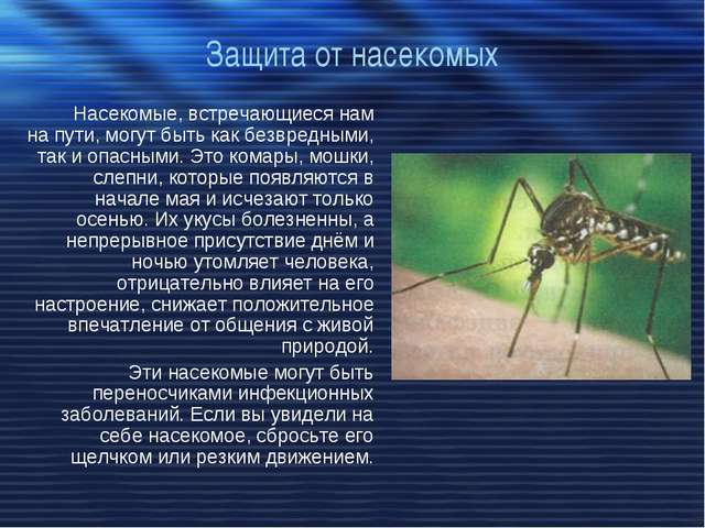 Защита от насекомых Насекомые, встречающиеся нам на пути, могут быть как безв...