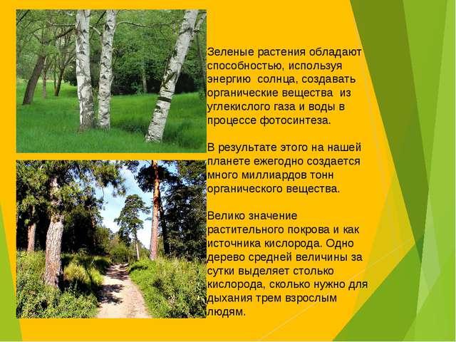 Зеленые растения обладают способностью, используя энергию солнца, создавать о...