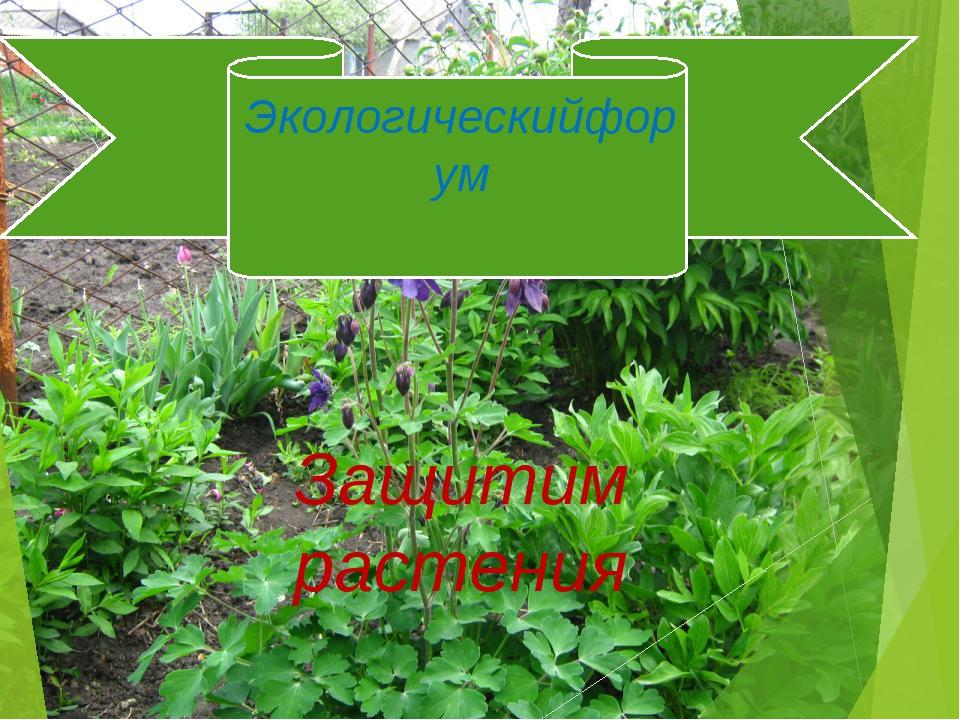Экологическийфорум Защитим растения