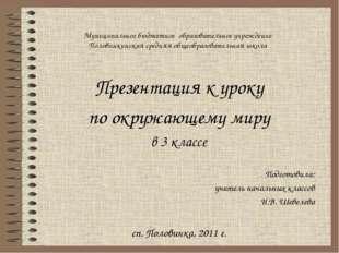 Муниципальное бюджетное образовательное учреждение Половинкинская средняя общ