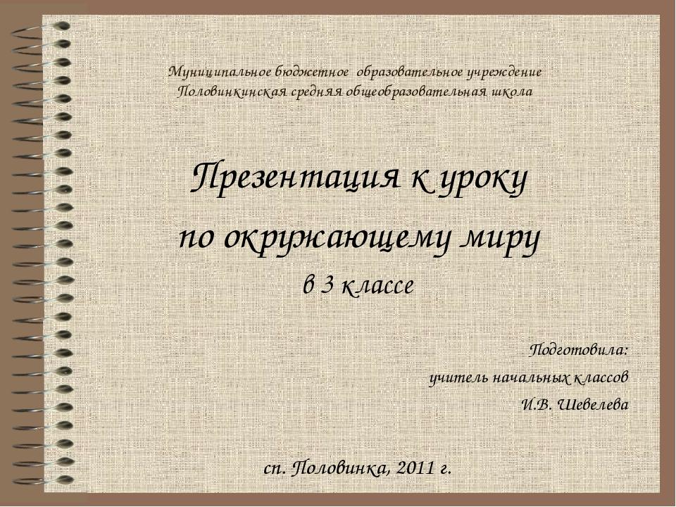 Муниципальное бюджетное образовательное учреждение Половинкинская средняя общ...
