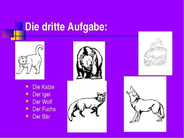 Die dritte Aufgabe: Die Katze Der Igel Der Wolf Der Fuchs Der Bär