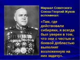 Маршал Советского Союза Георгий Жуков вспоминал: «Там, где действовали сибиря