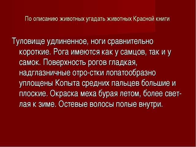 По описанию животных угадать животных Красной книги Туловище удлиненное, ноги...
