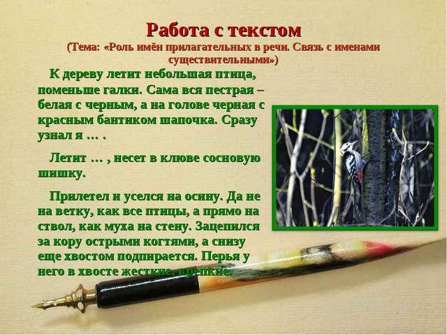 Работа с текстом (Тема: «Роль имён прилагательных в речи. Связь с именами сущ...