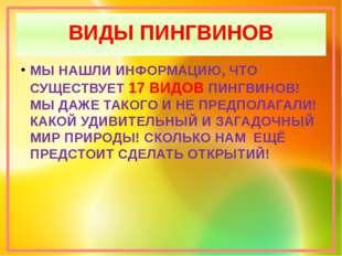 ВИДЫ ПИНГВИНОВ МЫ НАШЛИ ИНФОРМАЦИЮ, ЧТО СУЩЕСТВУЕТ 17 ВИДОВ ПИНГВИНОВ! МЫ ДАЖ